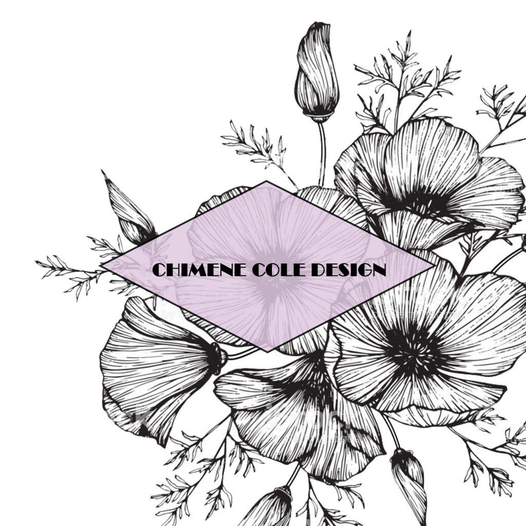 cole design graphiste web designer montpellier
